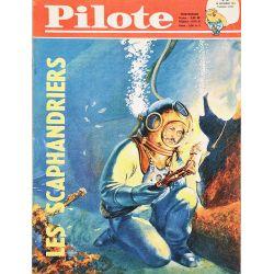 Pilote 101