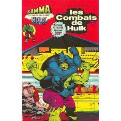 Hulk Gamma 3 - Les combats de Hulk